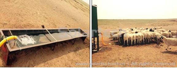 家畜饮水_【供应优质牲畜养殖饮水槽专用PE聚乙烯板材