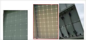 图3  户外使用4年的PVDF背板外层开裂形貌