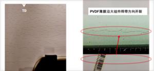 图4 使用PVDF背板的小组件(左)和全尺寸组件(右)在序列老化测试(DH1000+UV1000+TC200)后沿纵向开裂