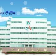 河南森源集团郑州森源新能源科技有限公司