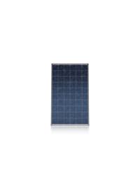 CS6K-P-FG-- 阿特斯阳光电力有限公司