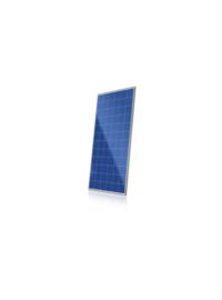CS6X-P-- 阿特斯阳光电力有限公司