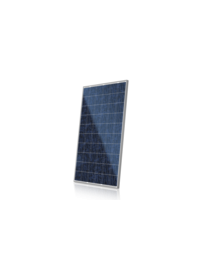 CS6P-P-- 阿特斯阳光电力有限公司