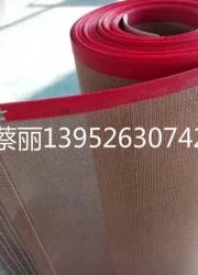 特(铁)氟龙网格带冷却带预缩机带食品烘干网带烘干机传送网带