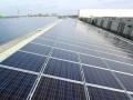 德国光伏项目开发商Phoenix Solar AG在 申请破产