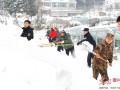 安徽六安:光伏电站除雪忙