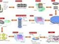 硅片国产化带来超200亿设备需求 单晶炉独占55亿