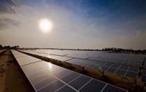 软银合资公司SB能源获卡纳塔克邦200MW太阳能项目