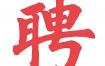 中智(泰兴)电力科技有限公司招聘公告