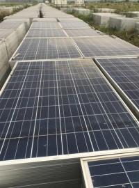 日升多晶260W二手拆卸组件太阳能光伏板-- 苏州新勤生光伏科技有限公司