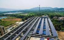 新政后 全球太阳能面板价格大跌 今年跌幅或超35%!