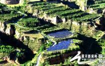 """山西隰县64座村级扶贫光伏电站已全部建成 光伏扶贫进入""""倒计时"""""""