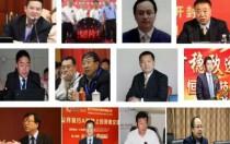 金刚线风云:谁在执掌中国11家主流大型金刚线企业?
