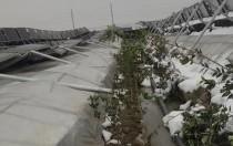 10MW屋顶光伏大棚发生倒塌 附鉴定探明事故过程及原因