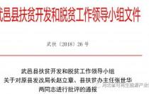 河北衡水武邑县36个光伏产业项目整改报告