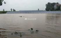 """河南商丘一光伏电站受台风影响 已变成""""雨""""光互补电站!"""
