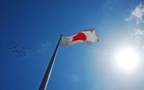 日本第二轮光伏招标拍卖出197MW项目 最低价16.47日元