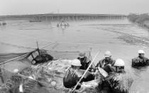 南京渔光一体光伏电站迎来丰收季 首次起鱼5万多斤