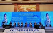 隆基钟宝申:国际能源转型 清洁能源堪当重任