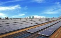 中国531新政或间接促成了美国光伏行业的复苏和发展