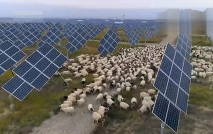 西藏20兆瓦牧光互补复合型光伏项目EPC总承包招标公告