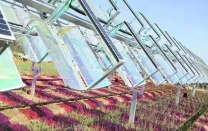 光子改变未来——漫谈精准高效新型光伏农业技术