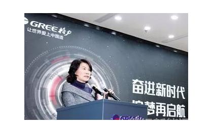 董明珠:关于制定光伏直流发电自发自用补贴政策的建议