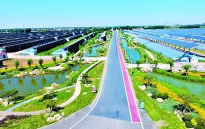 青岛的这个小镇因太阳能闻名全国