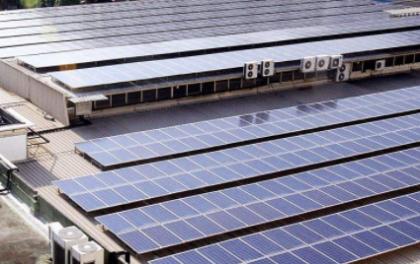 江苏灌能新能源有限公司分布式光伏电站运行维护工程项目招标公告