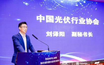 刘译阳:平价上网需以消纳为前提