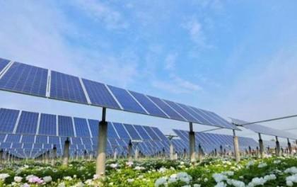 鲁政委:可再生能源获得绿色金融重点支持