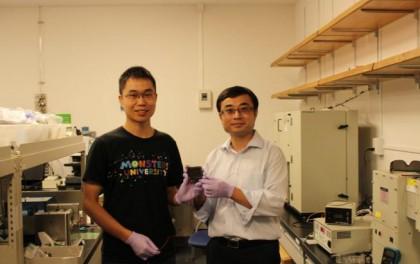 日本科学家已经开发出新型钙钛矿工艺