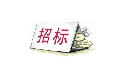 上海临港弘博新能源光伏发电项目15MWp光伏组件招标公告