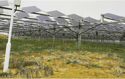 正泰投资逾20亿 在沙漠上建光伏电站