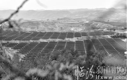 山西汾西:光伏扶贫助村民增收致富