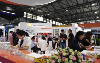光烁申城,锦州阳光能源亮相SNEC2019太阳能光伏展会