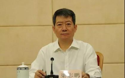 国家能源局原新能源司副司长梁志鹏调任体改司