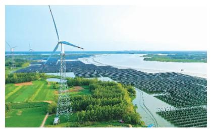 中国引领全球可再生能源发展(专家解读)