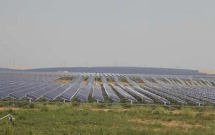 中国式奇迹:村民在光伏电站养鸡羊 比上海大3倍的沙漠1/3变成绿洲