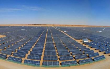 上海电力子公司被确定为泗洪领跑奖励激励基地#5标段项目开发业主