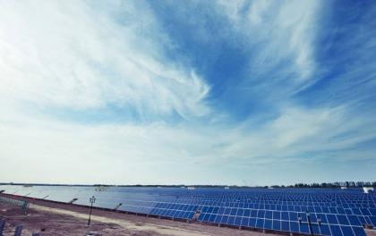 大全新能源张龙根:2020年单晶产品将占全球市场份额的80%