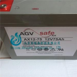 霍克蓄电池AX12-100/12V100AH 免维护铅酸