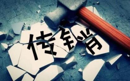 """河北:严禁以""""光伏发电""""等名义进行传销"""
