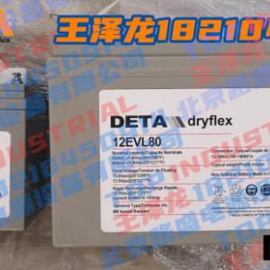 德国DETA银杉蓄电池12EVL65银杉DETA