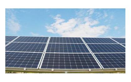 美最大太阳能项目威胁生态惹众怒