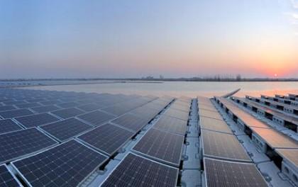 山东新能源产业培育出全国冠军,光伏发电4.86万家排名第一