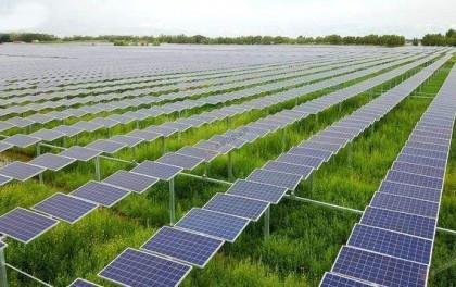 投资近14亿元!广东江门将新建两座农光互补光伏电站