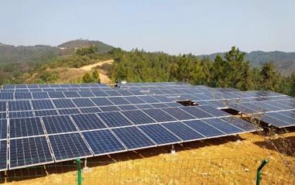 浙江景宁大力发展光伏发电项目 助力村集体稳步增收