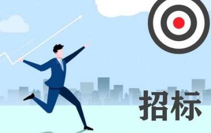 中广核宣州区养贤乡100MW平价光伏项目EPC总承包(重新招标)招标公告