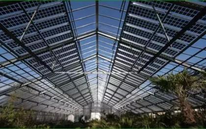 投资5亿元的农业光伏项目在环江开工
